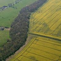 Viking Names · Vikings in the East Midlands